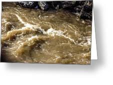 Caribou Stream Rapids Greeting Card