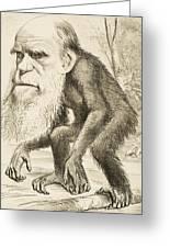 Caricature Of Charles Darwin Greeting Card
