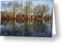Carleton Place On The Mississippi - 38 Greeting Card