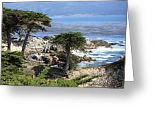 Carmel Seaside With Cypresses Greeting Card