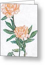 Carnation Flower Greeting Card