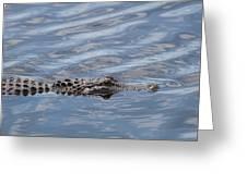Carolina Beach Marina Alligator Greeting Card