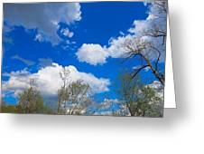 Carolina Blue Sky After The Rain Greeting Card