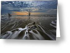 Carolina Lowcountry Greeting Card