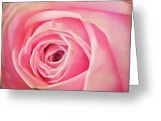 Carolina Rose Greeting Card