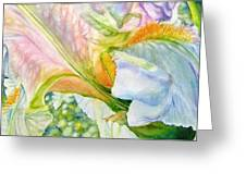 Carols-iris-i Greeting Card