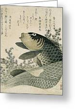 Carp Among Pond Plants Greeting Card