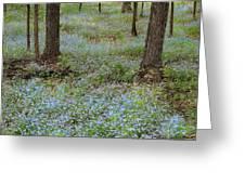 Carpet Of Blue Greeting Card