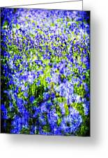 Carpet Of Blue Greeting Card