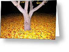 Carpet Of Leaves Greeting Card