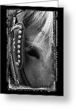 Carriage Horse B And W Greeting Card