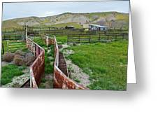 Carrizo Plain National Monument Ranch Greeting Card