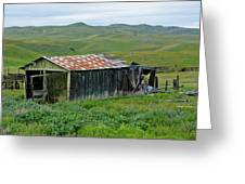 Carrizo Plain Ranch Greeting Card