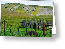 Carrizo Plain Ranch Wildflowers Greeting Card