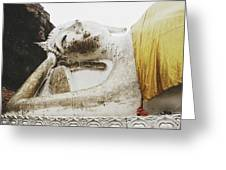 Carved Stone Buddha Statue Wat Temple Complex In Old Siam Kingdom, Ayutthaya, Thailand Greeting Card