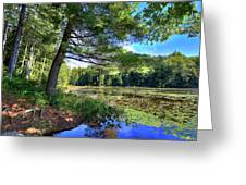 Cary Lake In August Greeting Card