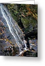 Cascade Greeting Card
