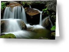 Cascade Creek Yosemite Greeting Card