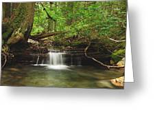 Cascade Happy Trail Greeting Card