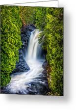 Cascade - Lower Falls Greeting Card