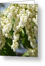 Cascade Of Charms Greeting Card