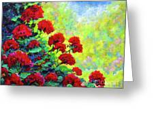 Cascade Of Geraniums Greeting Card
