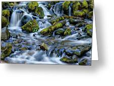 Cascade Of Many Waters Greeting Card