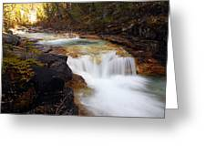 Cascade On Beauty Creek Greeting Card by Larry Ricker