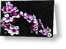 Cascade Painted  Greeting Card