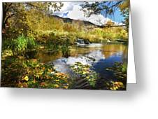 Cascade Springs Large Pool  Greeting Card