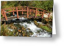 Cascade Springs With Bridge Greeting Card