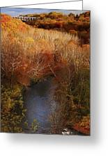 Cascade Valley Afternoon Greeting Card