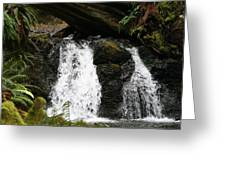 Cascade Waterfalls Wf1003 Greeting Card