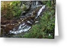 Cascadilla Falls Creek Gorge Trail Giant's Staircase Greeting Card