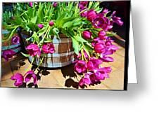 Cascading Purple Tulips  Greeting Card