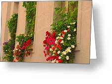 Cascading Windows Greeting Card