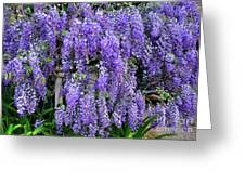 Cascading Wisteria 2 Greeting Card