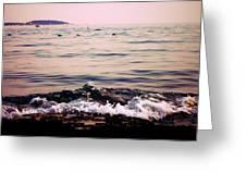Casco Bay  Greeting Card
