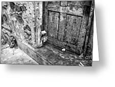 Casco Viejo Door Mono Greeting Card