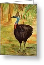Cassowary Bird Greeting Card