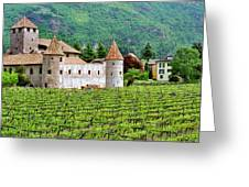 Castle And Vineyard In Italy Greeting Card