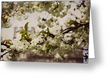 Castle Blossoms Greeting Card