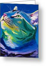 Cat - My Own Piece Of Sky Greeting Card by Alicia VanNoy Call