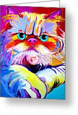 Cat - Tigger Greeting Card by Alicia VanNoy Call