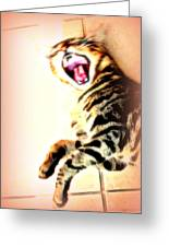 Cat Screaming To Me Greeting Card