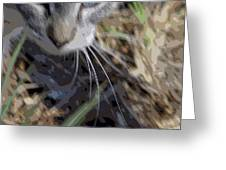 Cat A Hunting Greeting Card