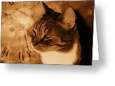 Cat And Clock Greeting Card