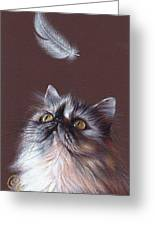 Cat And Feather Greeting Card