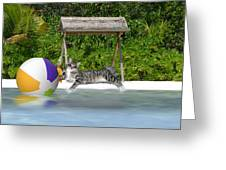 Cat At The Beach Greeting Card