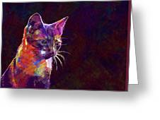 Cat Background Image Cute Red  Greeting Card